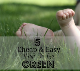 5 ways your family can go green on a budget