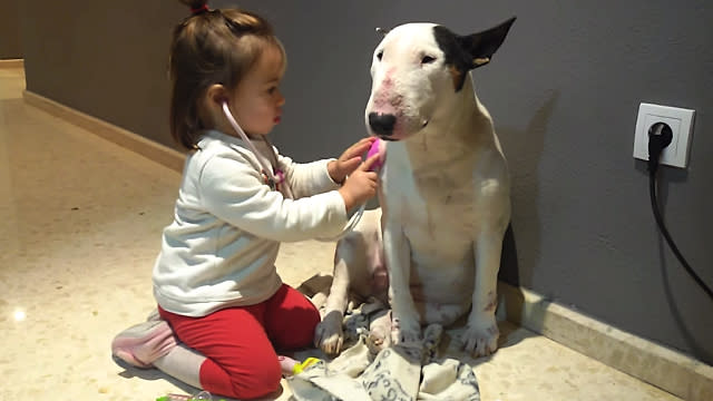 Watching This Little Girl Playing Doctor With Her Patient Dog Is the Best Kind of Medicine