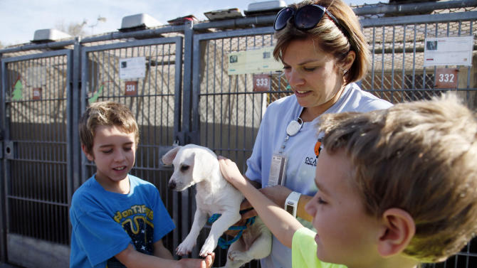 Erika Bennett, a kennel attendant/animal control officer at OC Animal Care, holds up a puppy for brothers Ryan Wartenberg, left, and Jason Wartenberg, as they look into adopting a pet at the shelter in Orange Calif., on Tuesday, Dec. 17, 2013. Some shelters around the country are ramping up for Christmas Day deliveries of new family pets, a move applauded by the American Society for the Prevention of Cruelty to Animals, whose new study supports seasonal adoptions. But some shelter leaders maintain that adoptions are better left for after the holiday rush. The Society for the Prevention of Cruelty to Animals Los Angeles, which is not affiliated with the national organization, still discourages pets as presents. (AP Photo/Nick Ut)