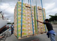 This file photo shows boxes of freshly harvested Philippine bananas, destined for China and South Korea being loaded onto a cargo vessel, in Davao del Norte province, in 2008. China has impounded Philippine fruit exports alleged to carry pests, squeezing a key industry amid a tense stand-off between the two countries over disputed territory, a Philippine official said on Saturday