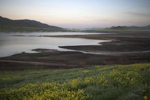 Water levels in Lake Success remain desperately low …