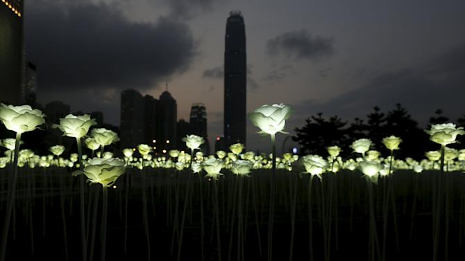 Illuminated white rose shaped LED lights are seen at Admiralty in front of the financial Central district in Hong Kong