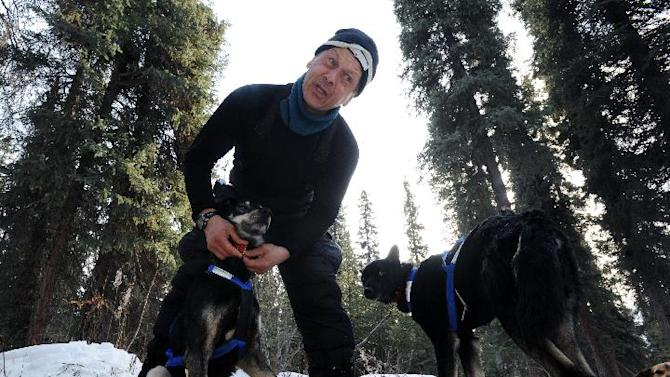 Four-time champion Martin Buser booties up his dog team before leaving the Rohn checkpoint in Alaska during the Iditarod Trail Sled Dog Race on Tuesday, March 5, 2013. (AP Photo/The Anchorage Daily News, Bill Roth)