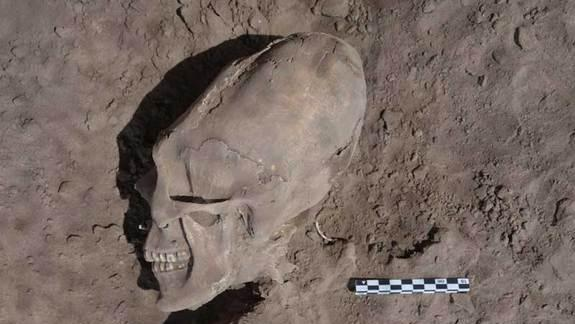 'Alien-Like' Skulls Excavated in Mexico