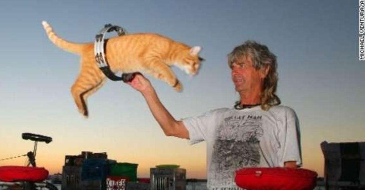 12 Ways To Avoid Becoming The Crazy Cat Lady