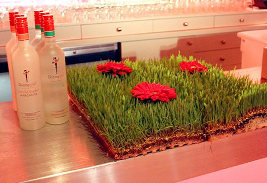 Gerbera Daisies in Wheatgrass