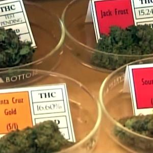 Washington state residents debate opening city-run marijuana shop