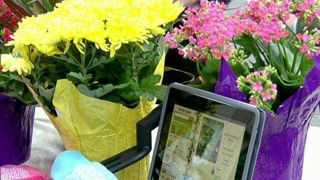 Apps to help your garden grow