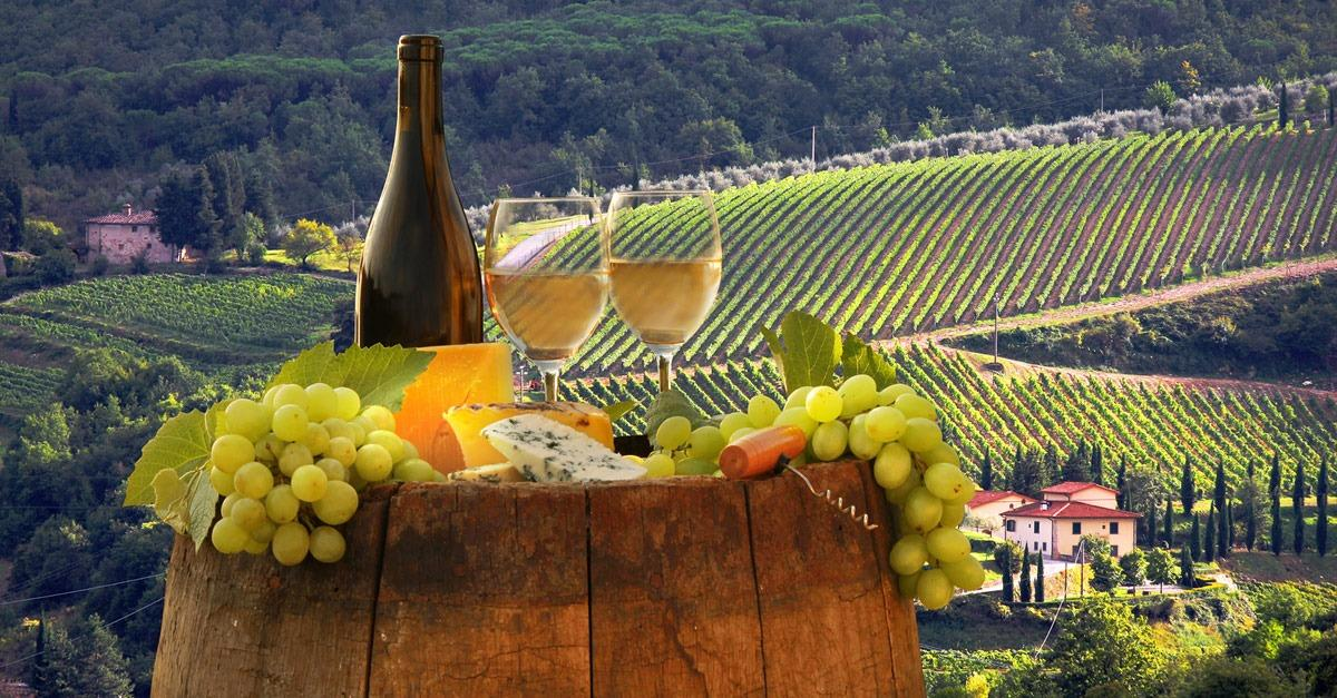 Top 12 Wine Vacation Destinations