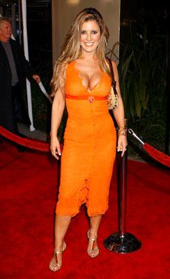 Jillian Barberie at the Hollywood premiere of Universal Pictures' Ray