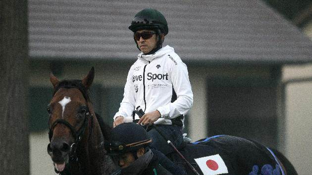 Japan's thoroughbred racehorse Just a Way, ridden by Yuichi Fukunaga, pictured after a training session, ahead of the Qatar Prix de l'Arc de Triomphe horse race, in Chantilly, northern France, on October 1, 2014