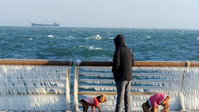 A man stops to look at a frozen handrail as he walks his dogs along the coastline, in Dalian