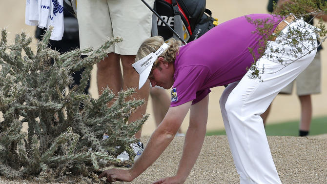 Brandt Snedeker tries to remove his ball from a cactus during the final round of the Waste Management Phoenix Open golf tournament on Sunday, Feb. 3, 2013, in Scottsdale, Ariz. Snedeker finished in second place. (AP Photo/Matt York)