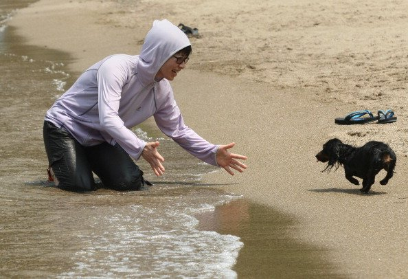 TOYOOKA, JAPAN - JULY 28: Japanese woman tries to catch her pet dog during the swimming at Takeno Beach on July 28, 2012 in Toyooka, Japan. This beach is especially open for dogs and their owners each