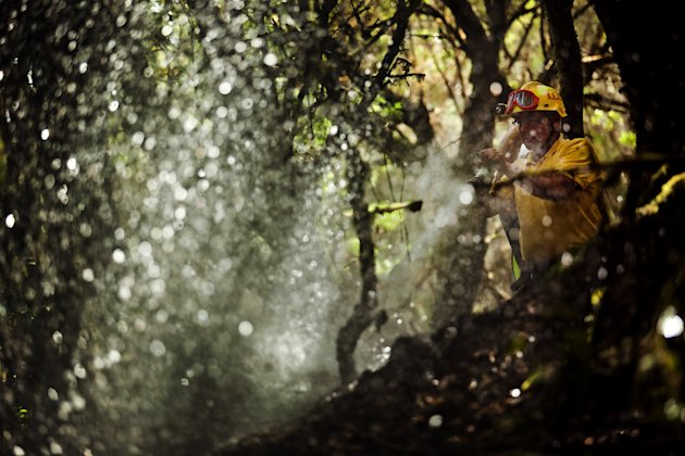 A firefighter works to hold the spread of wildfires in the forest of Garajonay National Park, La Gomera, Spain, Sunday, Aug. 12, 2012.  Wildfires spurred by high temperatures raged across Spain's Cana