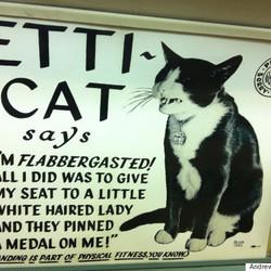 Etti-Cat, The O.G. Of Cat Memes, Is Here To Teach You Some Manners