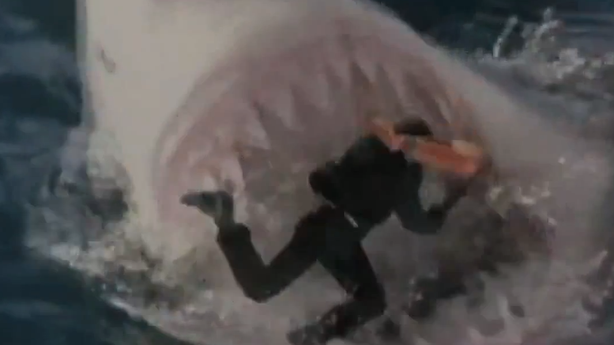 A Toast to Shark Week and Why You Shouldn't Mess with Bicyclists