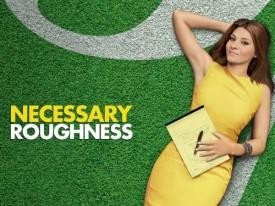 USA's 'Necessary Roughness' Cancelled