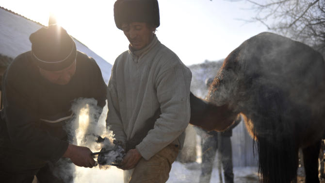 This photo taken on March 8, 2012 shows ethnic Csango people shoeing a horse in the village of Vladnic, eastern Romania. Volunteer doctors of the Hungarian Charity Service of the Order of Malta, have traveled to remote villages in eastern Romania to provide health care services for people of the Csango minority. (AP Photo/Bela Szandelszky)