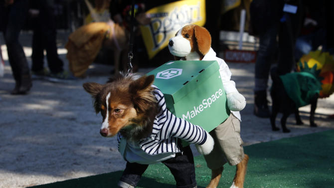 IMAGE DISTRIBUTED FOR BEGGIN' - Ruby, a mini Australian shepherd, appears dressed as a crew of movers during the Tompkins Square Halloween Dog Parade presented by Beggin' Saturday, Oct. 25, 2014 in New York. (Photo by Jason DeCrow/Invision for Beggin'/AP Images)