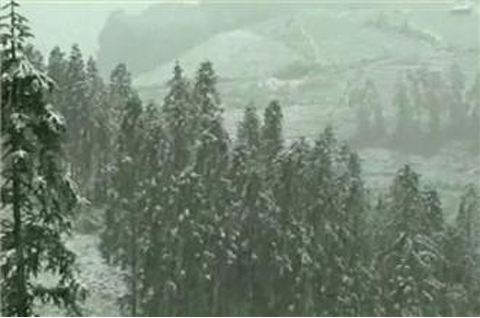 20131216960985734_20 - Snow falls in Vietnam - Asia   Middle East