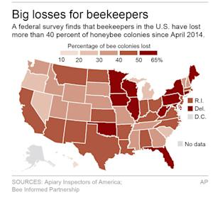Graphic shows bee colony losses by state since April …