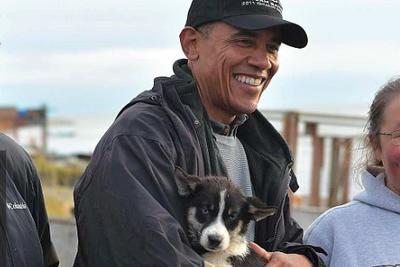 Barack Obama met a SPORTS PUPPY while in Alaska