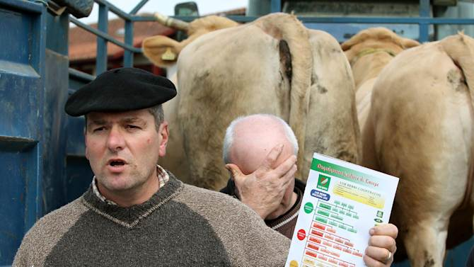 Jean Paul Duhalde, a farmer, shows reporters the organization chart for the Cooperative Lur Berri group, which includes Spanghero society, which is identified by French Consumer Affairs Minister Benoit Hamon as a major culprit in the use of horse meat in food products, in Aicirits, southwestern France, Monday, Feb. 18, 2013.  Tests have found horsemeat in school meals, hospital food and restaurant dishes in Britain, as the scandal over adulterated meat spread beyond frozen supermarket products, and Britain's Environment Secretary Owen Paterson called for a Europe-wide overhaul of food testing in the wake of the ongoing horsemeat scandal.   The Spanghero company denied wrongdoing.(AP Photo/Bob Edme)