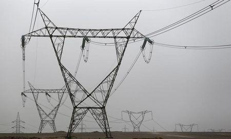 Electricity pylons and power transmission lines are seen at western desert road near Minya governorate, south of Cairo