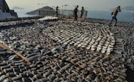 Image taken on January 2, 2013 shows shark fins drying in the sun on the roof of a factory building in Hong Kong. A conservation victory restricting global trade in more shark species will take a fresh bite at Hong Kong's market in fins