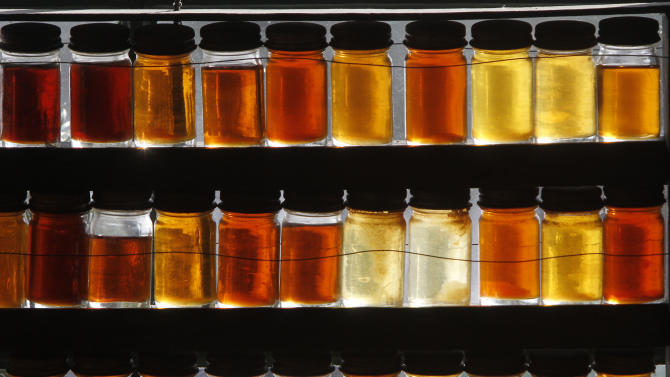 In this Friday, Feb. 15, 2013 photo, 18 different grades of maple syrup are displayed in East Montpelier, Vt. Vermont lawmakers are considering whether to drop the state's traditional maple labeling system in favor of an international one. (AP Photo/Toby Talbot)