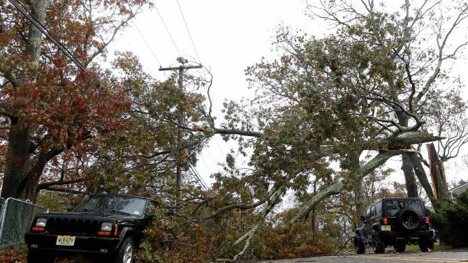 FILE - In this Oct. 30, 2012 file photo, a vehicle, right, makes its way under a downed tree caused by hybrid storm Sandy in Brick, N.J. Experts say the winds of Superstorm Sandy took out more trees in the neighborhoods, parks and forests of New York and New Jersey than any previous storm on record. (AP Photo/Julio Cortez)