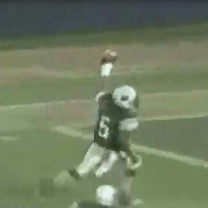 Reggie Bush high school highlights