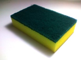 Your Sponge Is Harboring Bacteria