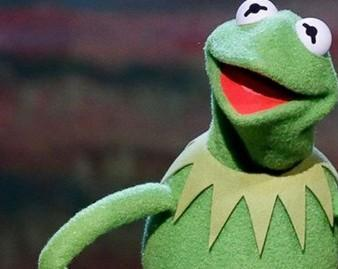 Kermit's advice for newly discovered look-alike frog: 'Shorten your name'