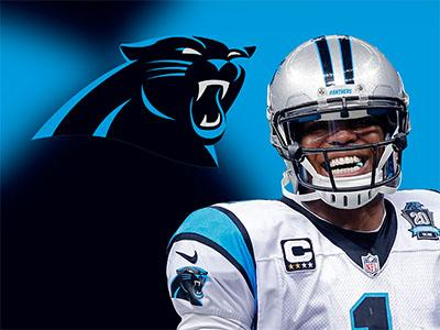 Panthers QB Cam Newton: Taking It 'Day by Day'