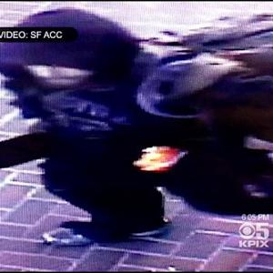 Surveillance Video May Lead To Suspect In SF 'Cat Lady' Attack
