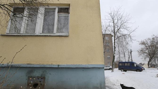 A stray cat walks outside an apartment building with an iron panel covering a basement window in the Belarusian capital Minsk, Monday, Feb. 4, 2013. Municipal authorities in Belarus have walled up stray cats in basements in compliance with Soviet-era regulations, dooming them to death of hunger. But some residents made holes for cats to escape. (AP Photo/Sergei Grits)