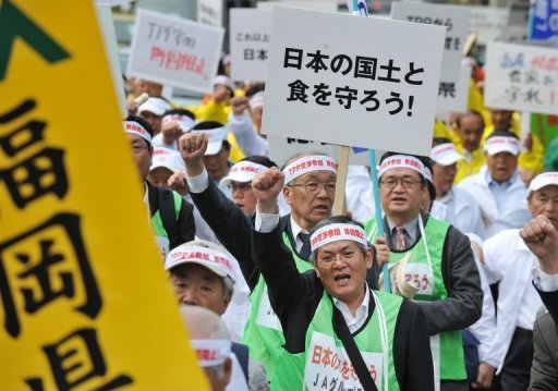 Protesters from a Japanese local farmer's group stage a demonstration march