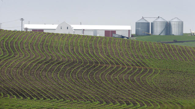 Farm Bill Is like Welfare for the Wealthy: Mark Bittman