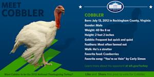 Pardoned Turkeys Receive the Facebook Treatment