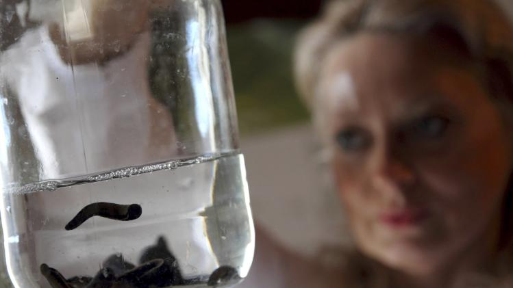 Tatijana Gambar, a doctor, looks at a bottle containing leeches at her clinic in Porec