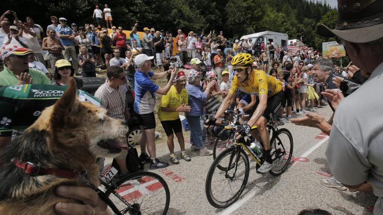 A spectator holds a small dog, left, as Bradley Wiggins of Britain, wearing the overall leader's yellow jersey, passes Granier pass during the 12th stage of the Tour de France cycling race over 226 kilometers (140.5 miles) with start in Saint-Jean-de-Maurienne and finish in Annonay, France, Friday July 13, 2012. (AP Photo/Christophe Ena)