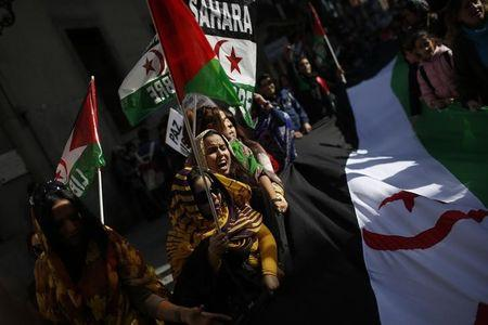 Western Sahara dispute spills over into nuclear arms meeting: envoys
