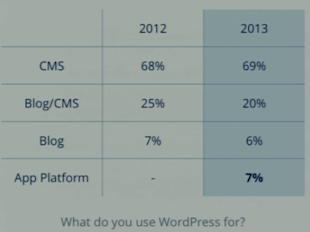 Matt Mullenweg: State of WordPress 2013 image wp state of word 5