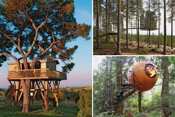 Tree house hotels: 6 of the world's oddest