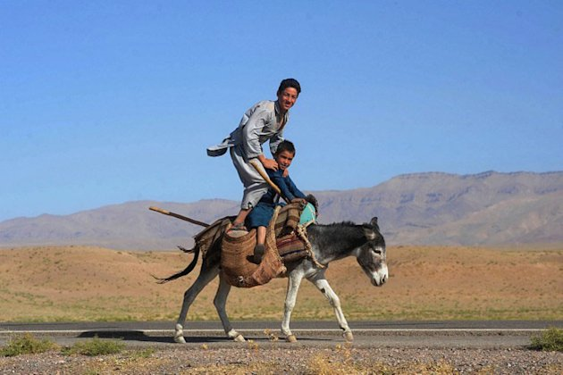 Afghan youths pose as they ride a donkey on the outskirts of Herat on September 7, 2012. Despite billions of dollars in Western development aid, the United Nations says half of Afghanistan's estimated