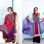 shariq-textiles-feminine-designer-embroidered-collection (3)