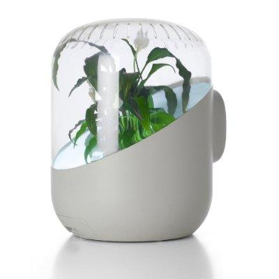 The Andrea Air Purifier ($200).