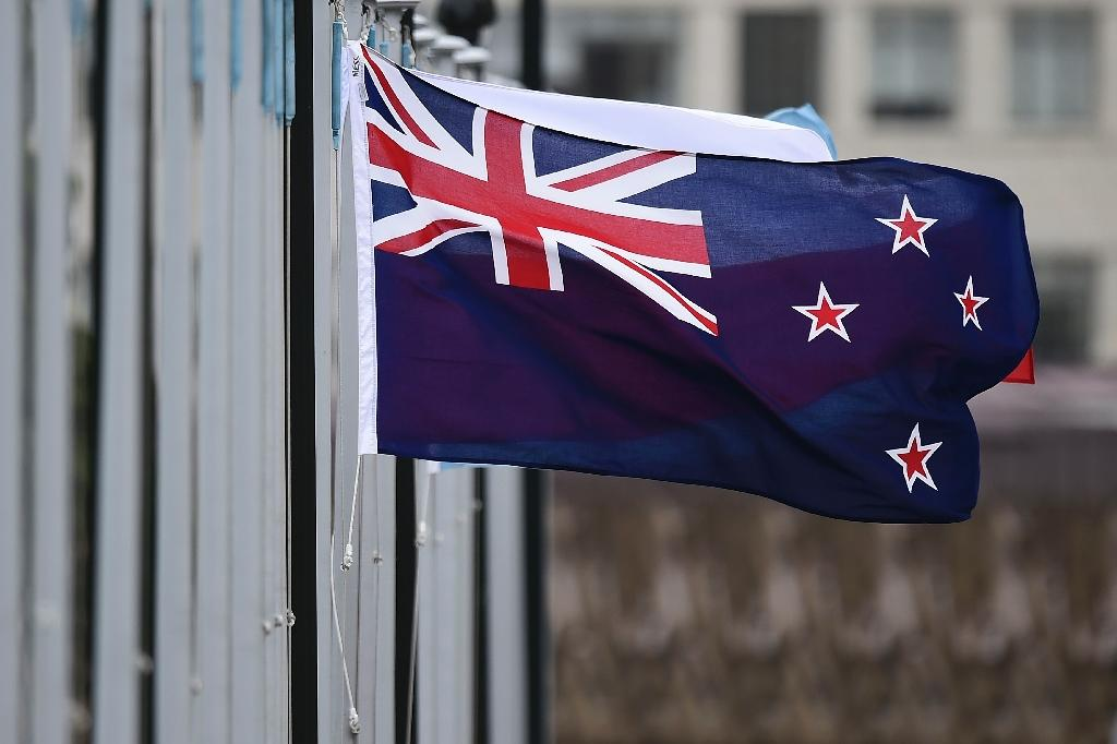 New Zealand flag designs take leaf from rugby union